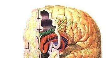 精神病患者如何健康饮食